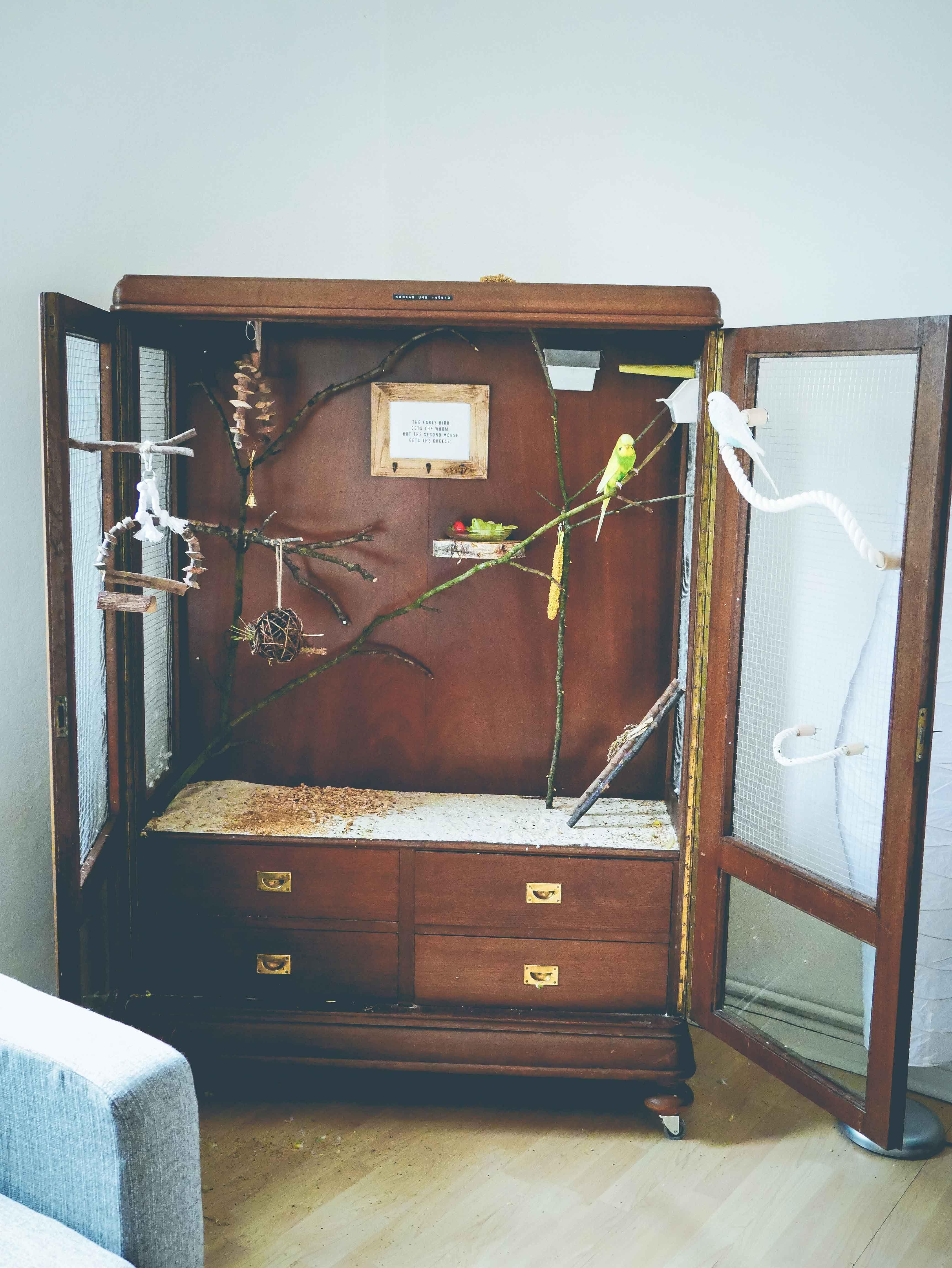 Vogelkäfig aus altem Schrank DIY voliere käfig vintage