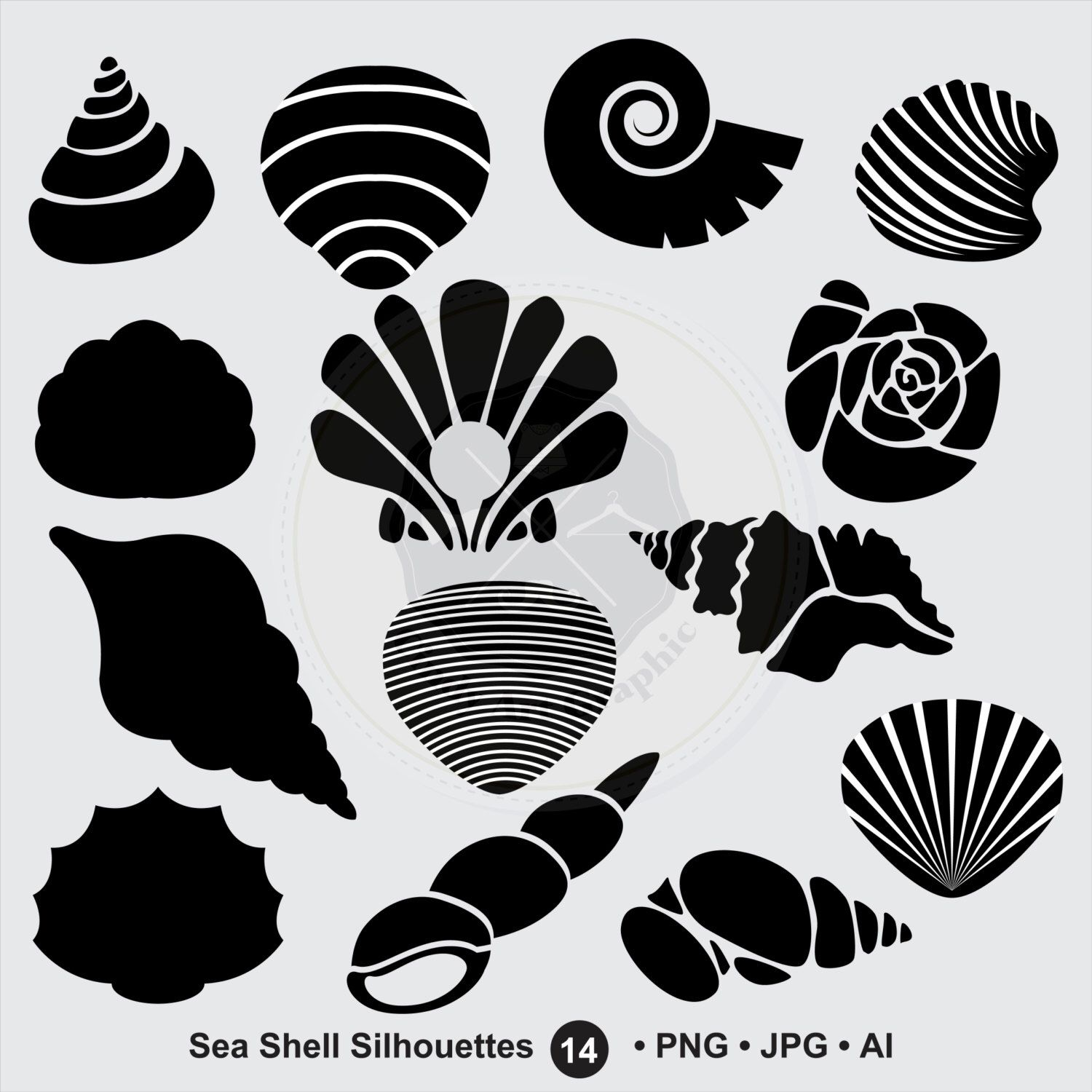 Sea Shell Silhouettes SVG shell clipart bundle svg shell svg Cut