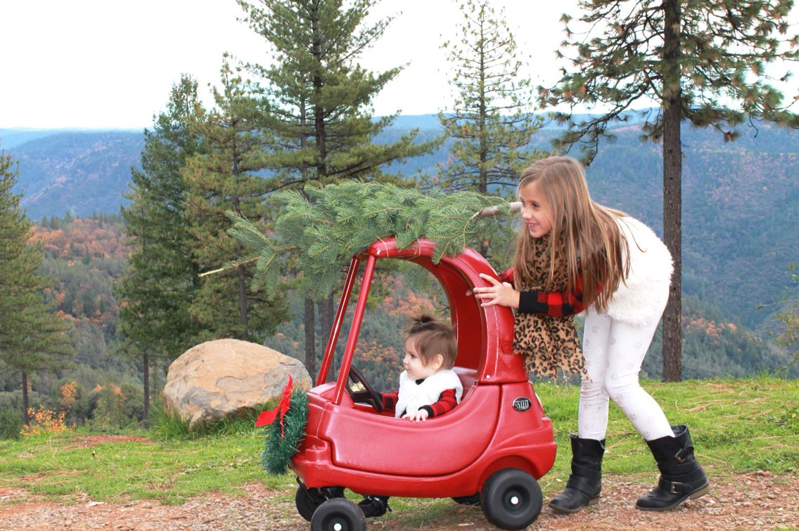 Tree farm, Christmas cards, little tikes, cozy coupe, holiday photos ...