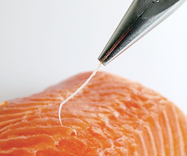 How To De Bone A Fish Fillet How To Video Finecooking Fish Fillet Salmon Sushi Salmon Fillets