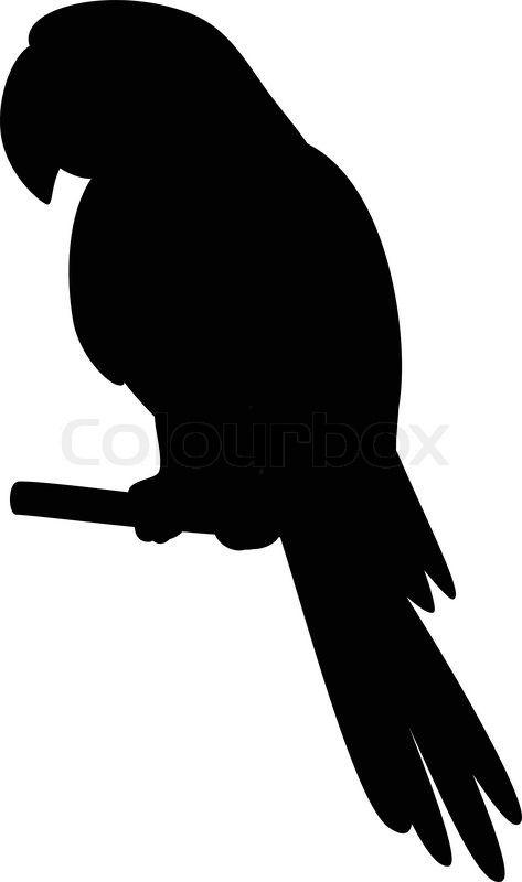 Stock Vektor Von Papagei Auf Einer Stange Silhouette