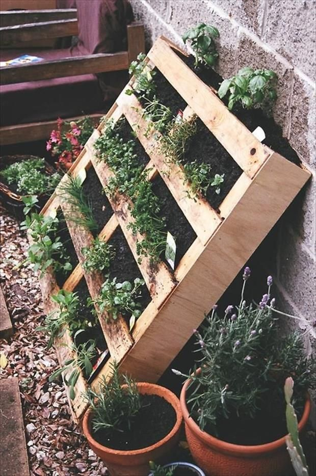 17 Best Images About Garten On Pinterest | Gardens, Herbs Garden ... Kreative Gartendesigns Rasen