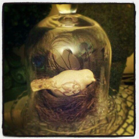 Real bird's nest under bell jar #designbyerinsaba Buffet decor, vintage spring decor, dining room decor @erinsaba