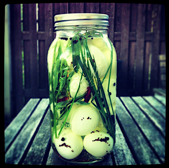 Tarragon Pickled Eggs are a great summertime staple for quick salads & sandwiches.  From One tomato, two tomato.