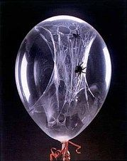 How to make spider webs inside a balloon. Great for parties.