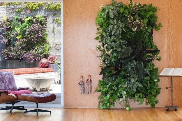 Bring The Forest Right Into Your Living Room With These Living Wall Pockets Vertical Garden Wall Garden Vertical Garden Indoor
