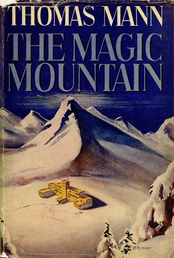 Image result for the magic mountain book cover
