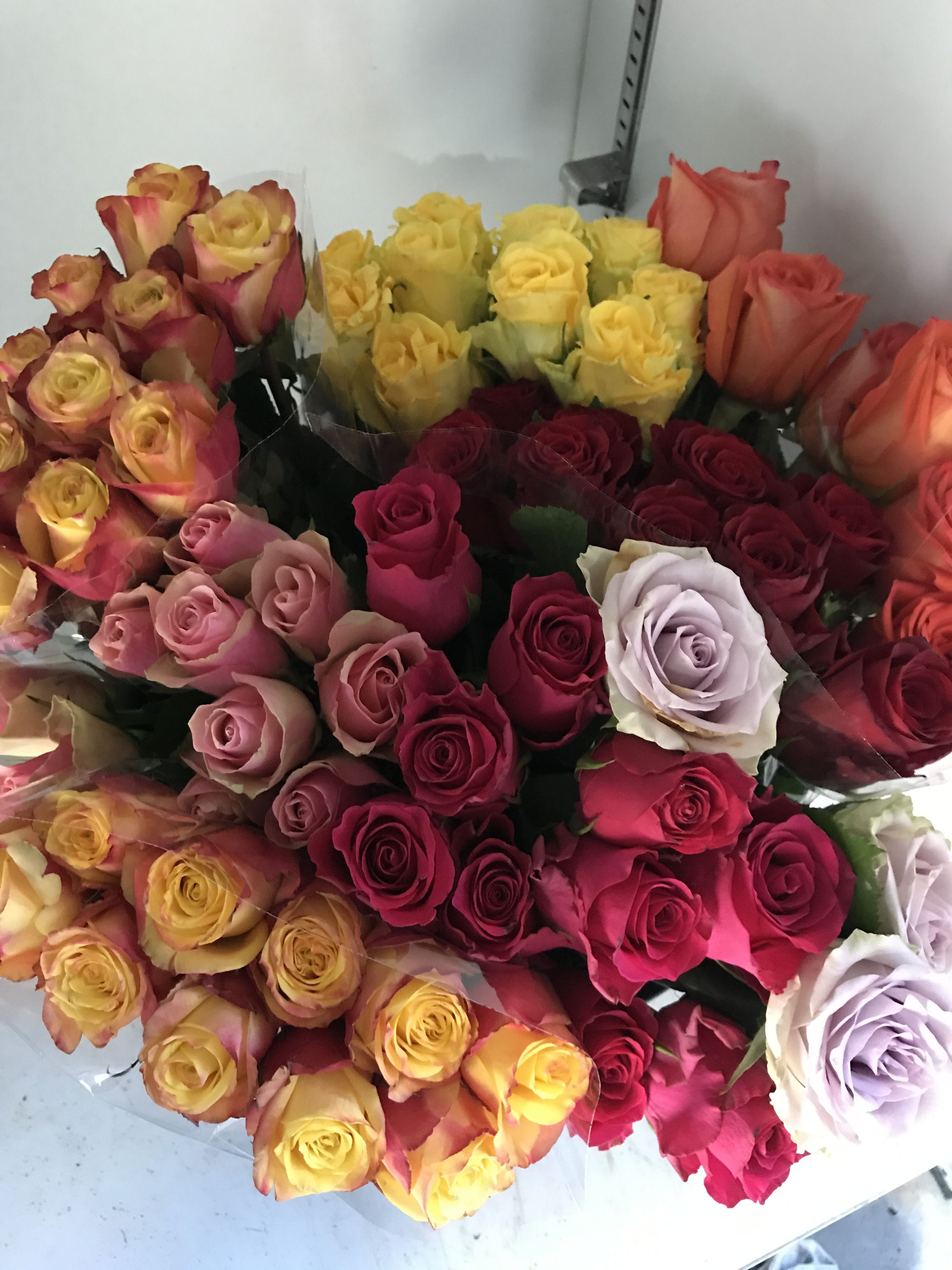 Blooms Only Have A Huge Selection Of The Cheap Wholesale Flowers