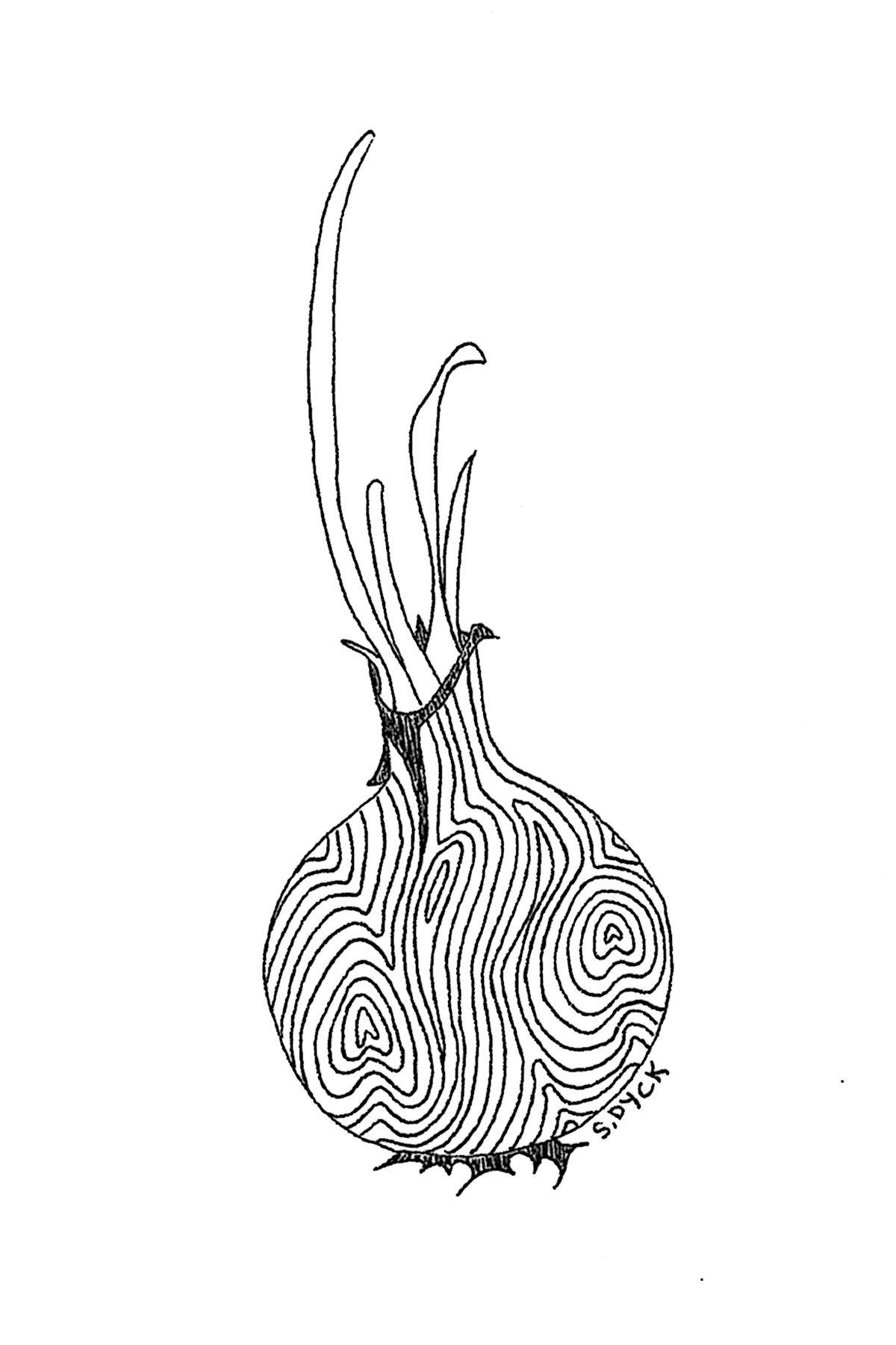 """ion 4""""x6"""" drawing DIY"""