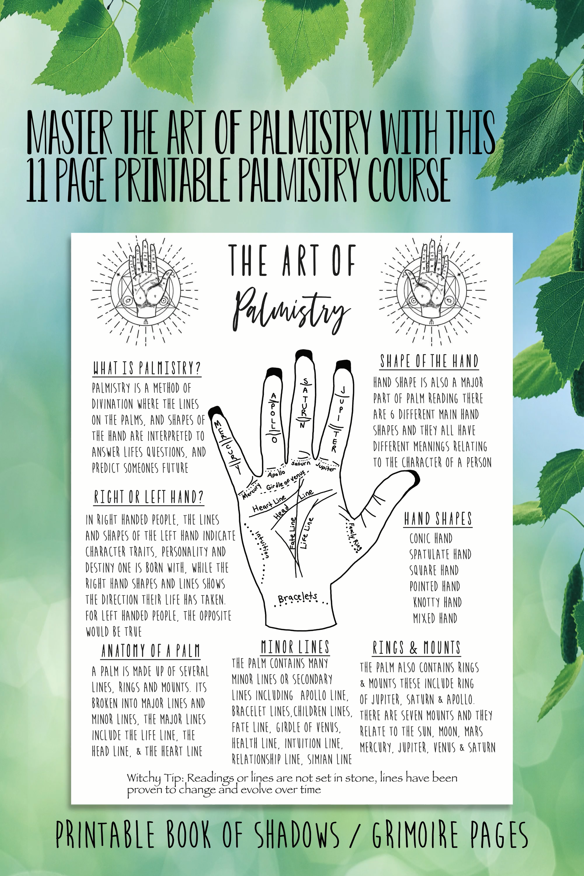 Palmistry Book Of Shadows Pages Witch Supplies Tools Reference Page Basic Witchcraft Grimoire Printable Pages How To Read Palms Video Video Palm Reading Charts Book Of Shadows Reading For Beginners [ 3000 x 2000 Pixel ]