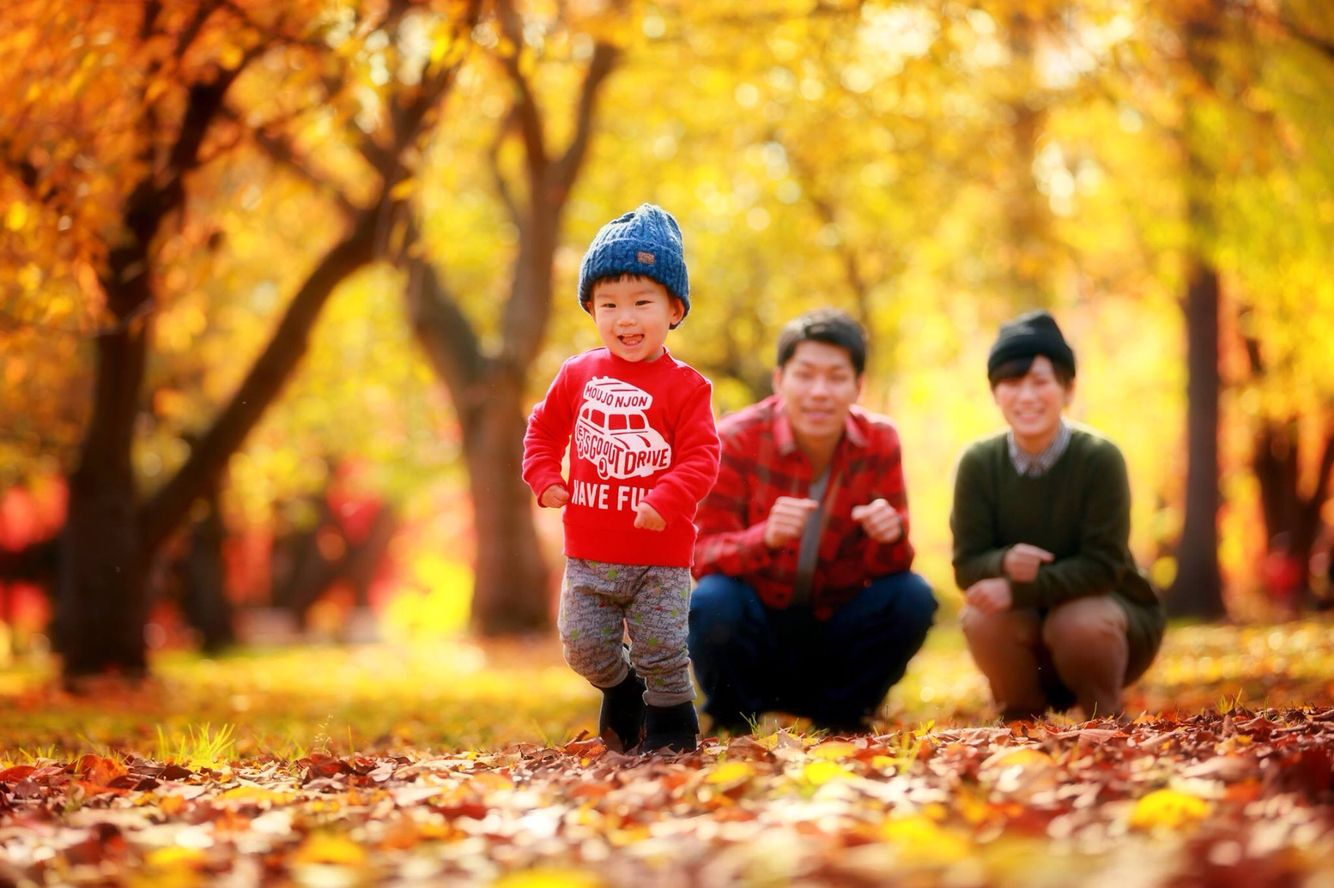 Commemorative photograph of a two-year-old #hirosaki #family #photo