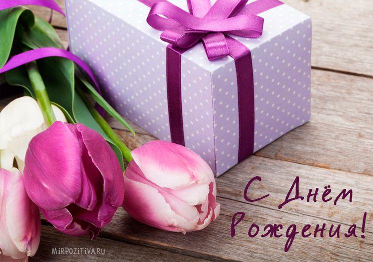 Открытки с тюльпанами с днем рождения стильные, смешной