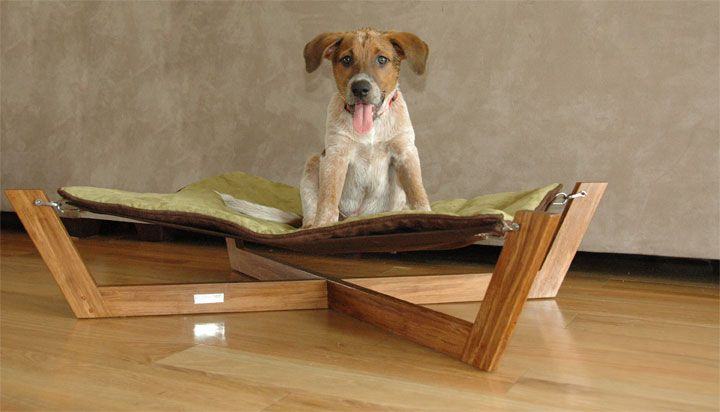 Eco-Friendly Modern Luxury Pet Furniture by Corey Drew