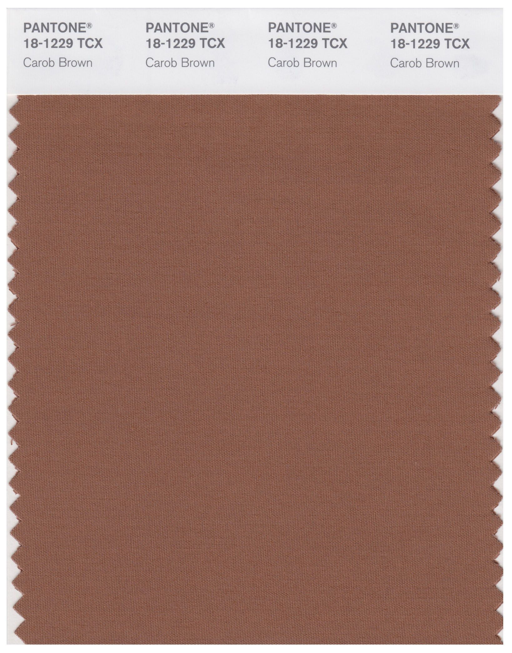 what color is taupe - HD1638×2086