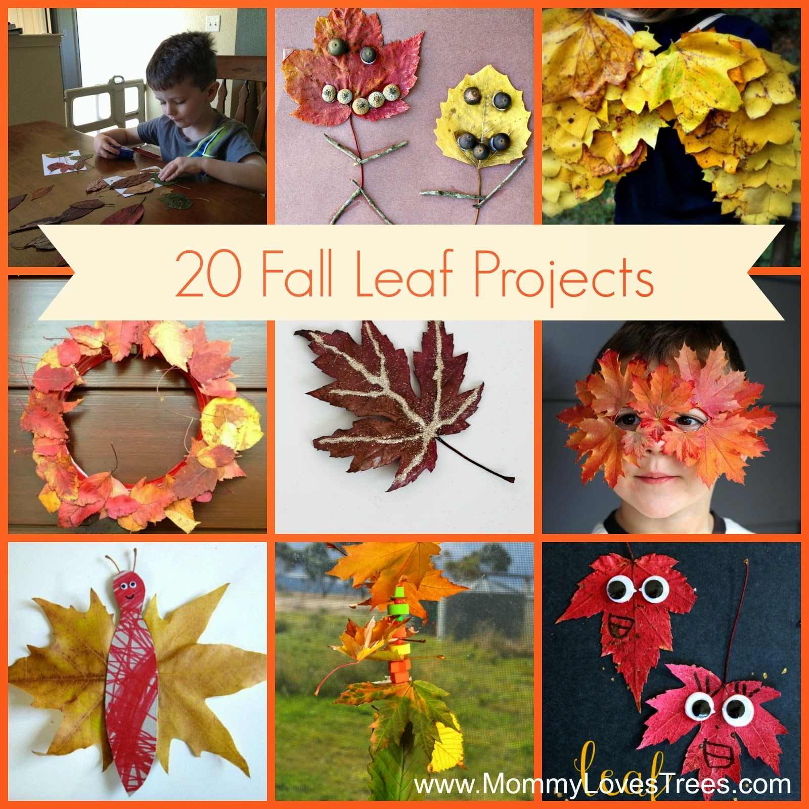 Nature Walk 20 Art Projects Using Fall Leaves