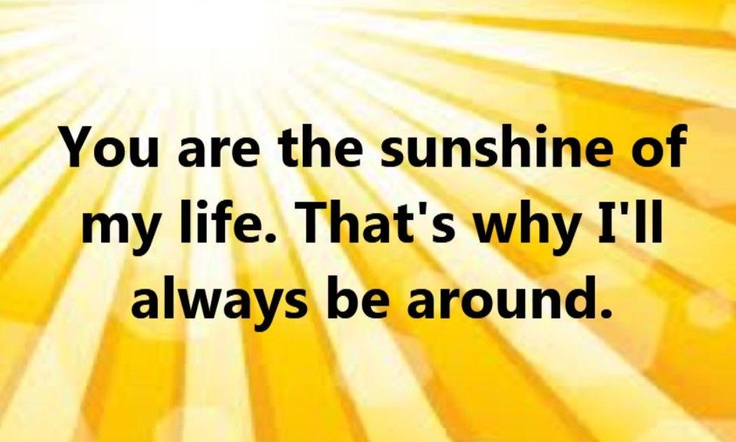 you are the sunshine of my life lyrics