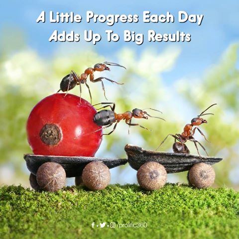 A Little Progress Each Day Adds Up To Big Results Tuesdayfeeling
