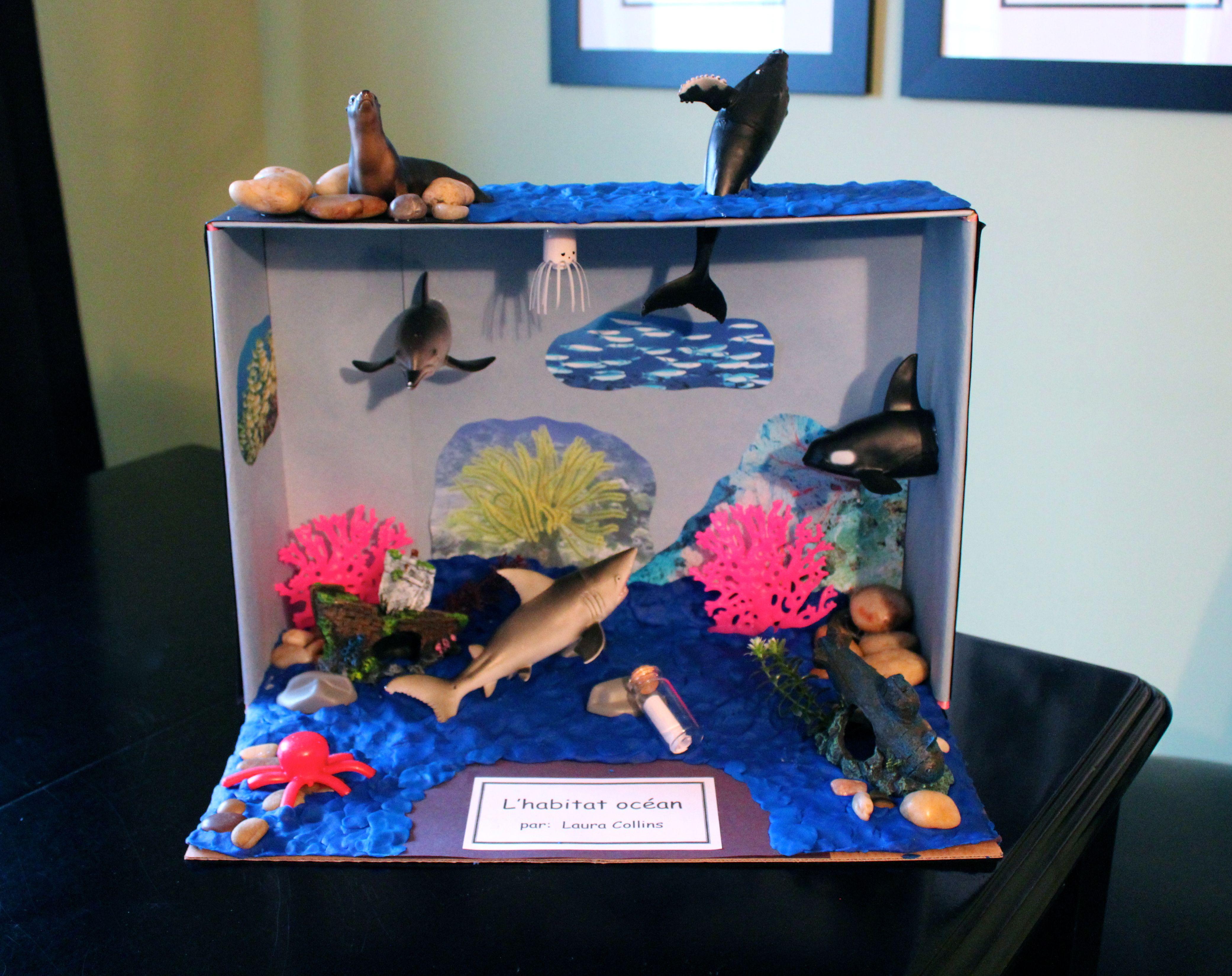 top ocean habitat diorama - photo #30