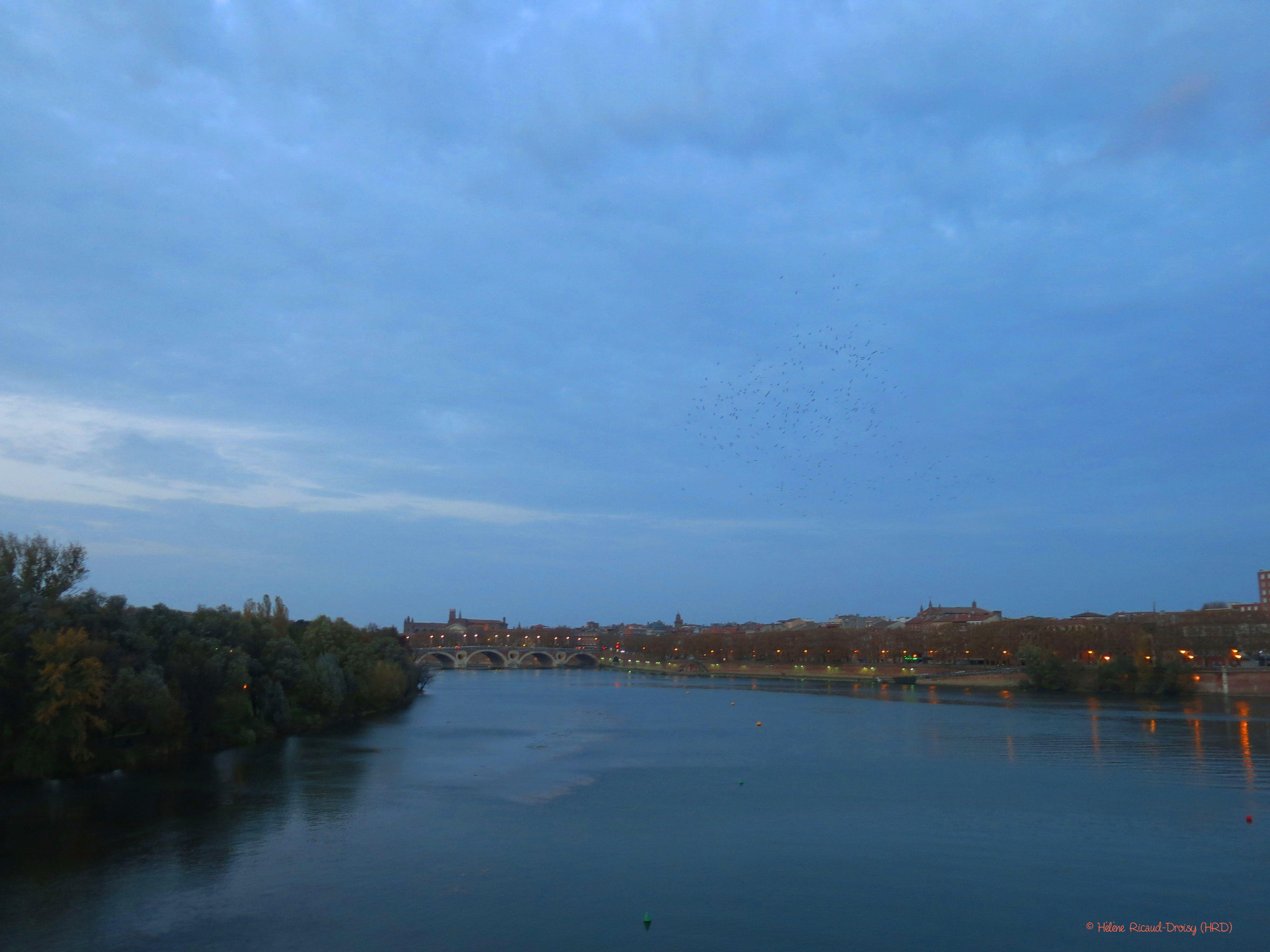 Le pont de la Garonne - Hélène Sarrazin