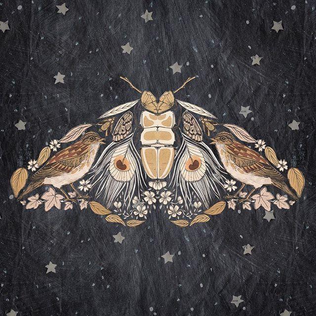 nachtmot samengesteld uit veren, vogels, bloemen - #australian #bloemen #nachtmot #samengesteld #uit #veren #vogels