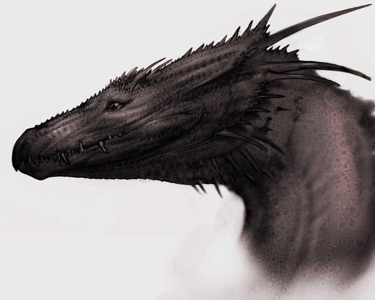 dragons dragon fantasy art