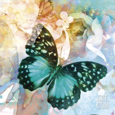 Emerald Butterfly II Giclee Print by Ingrid Van Den Brand at Art.com