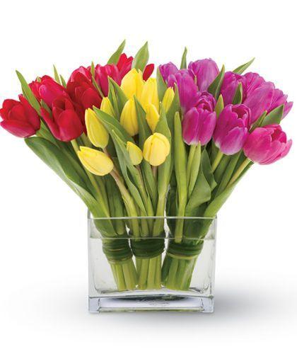 Tulips Together Flower Arrangements Diy Fresh Tulips White Flower Arrangements