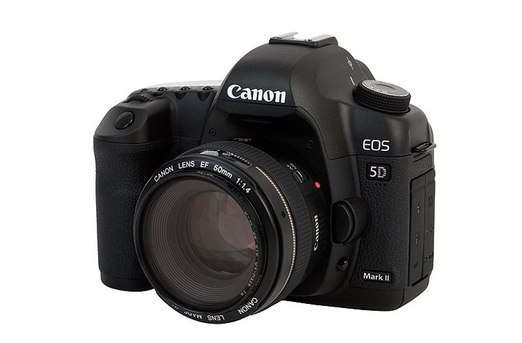 Canon Eos 5d Contains A Full Frame 12 8 Megapixel The Pictures Produced With That Camera Have A Great Resolution In Canon Eos Canon Camera Canon 5d Mark Iii