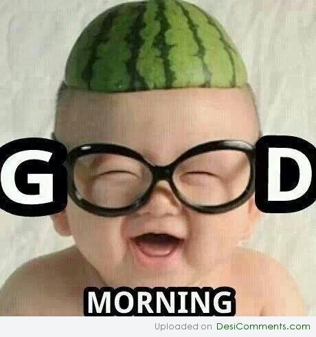 Anand K Vajapeyam On Twitter Funny Good Morning Images Funny Good Morning Memes Funny Babies