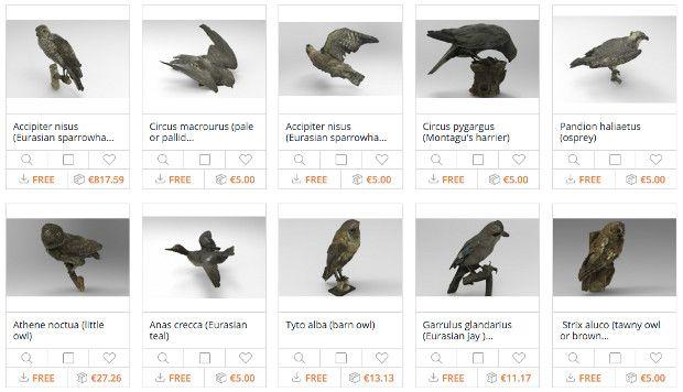 préservation animale avec la 3D http://www.lifestyl3d.com/cui-cui-fait-le-moineau-croa-croa-fait-le-corbeau-bzz-bzz-fait-limprimante/
