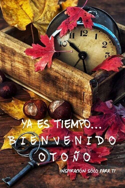 Ya es tiempo... Bienvenido Otoño #bienvenidootoño Ya es tiempo... Bienvenido Otoño #bienvenidootoño Ya es tiempo... Bienvenido Otoño #bienvenidootoño Ya es tiempo... Bienvenido Otoño #bienvenidootoño Ya es tiempo... Bienvenido Otoño #bienvenidootoño Ya es tiempo... Bienvenido Otoño #bienvenidootoño Ya es tiempo... Bienvenido Otoño #bienvenidootoño Ya es tiempo... Bienvenido Otoño #bienvenidootoño Ya es tiempo... Bienvenido Otoño #bienvenidootoño Ya es tiempo... Bienvenido Otoñ #bienvenidootoño