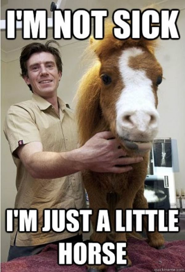 40 Hilarious Memes About Being Sick Sayingimages Com Funny Sick Memes Sick Meme Funny Friend Memes