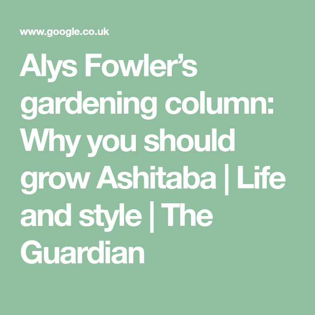 Why You Should Grow Ashitaba Small Back Gardens Growing 640 x 480