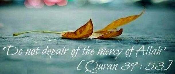 Mercy Of Allah Allah Go For It Quotes Islam