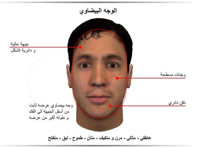الوجه البيضاوي مدونة أسرار الوجه Face Reading Body Language Study Skills