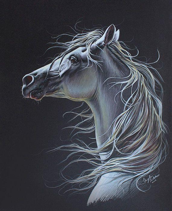 Arabian Horse Colored Pencil Drawing Original Artwork 16x20 On Etsy 200 00 Pencil Drawings Of Animals Horse Painting Horse Drawings