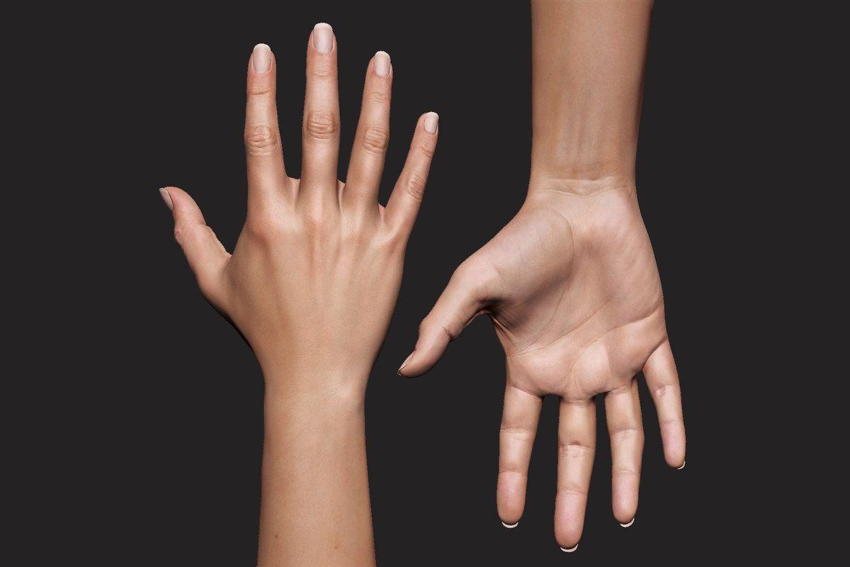 realistic female arm hand 3D model