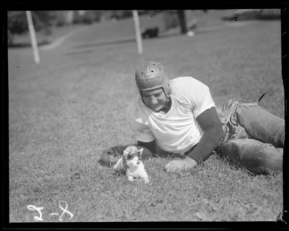 Player with Kitty