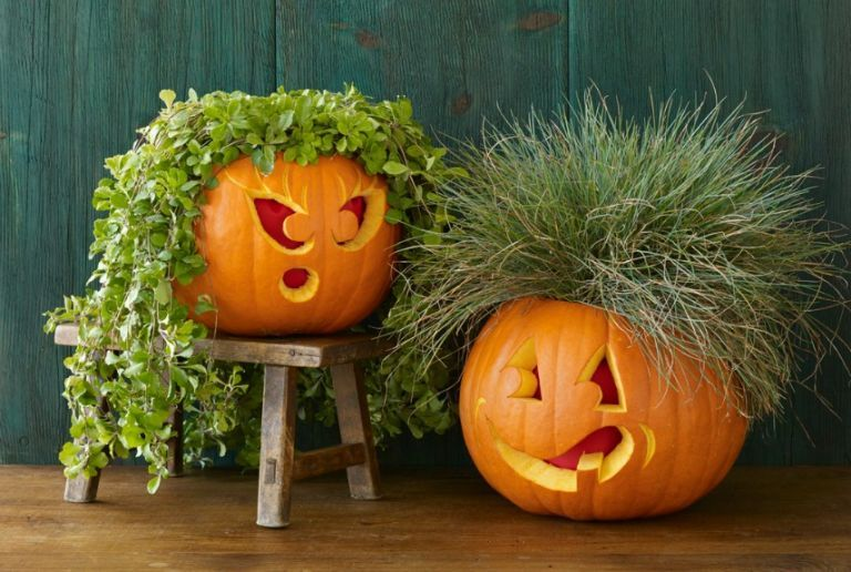30+ Easy Pumpkin Carving Ideas for Halloween Pumpkin carving - natural halloween decorations