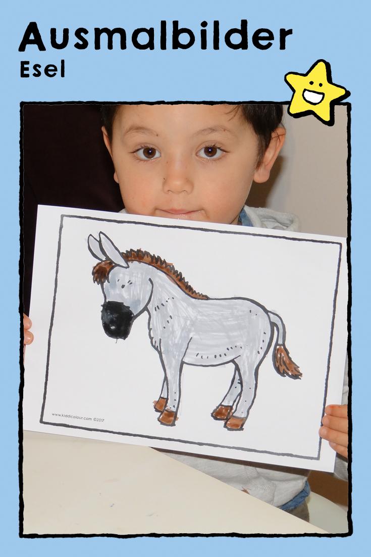 Esel Ausmalbilder Malvorlagen Zeichnungen Kinder Tiere Bauernhoftiere Pferde Donkey Coloring Pages Drawing Picture K Ausmalbilder Esel Zeichnungen
