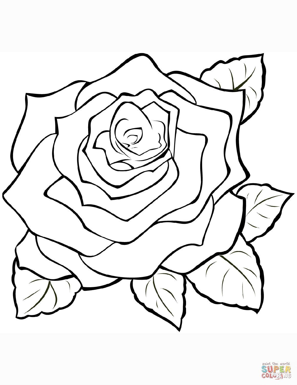 Rosen Malvorlagen Kostenlos Rose Coloring Pages Coloring Pages To Print Coloring Pages