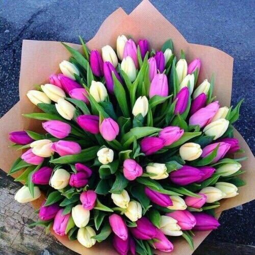 Discover And Share The Most Beautiful Images From Around The World Flower Lover Flowers Bouquet Gift Tulips Flowers