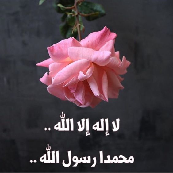 خلفيات لا اله الا الله محمد رسول الله متحركه Makusia Images Instagram Instagram Photo Photo And Video