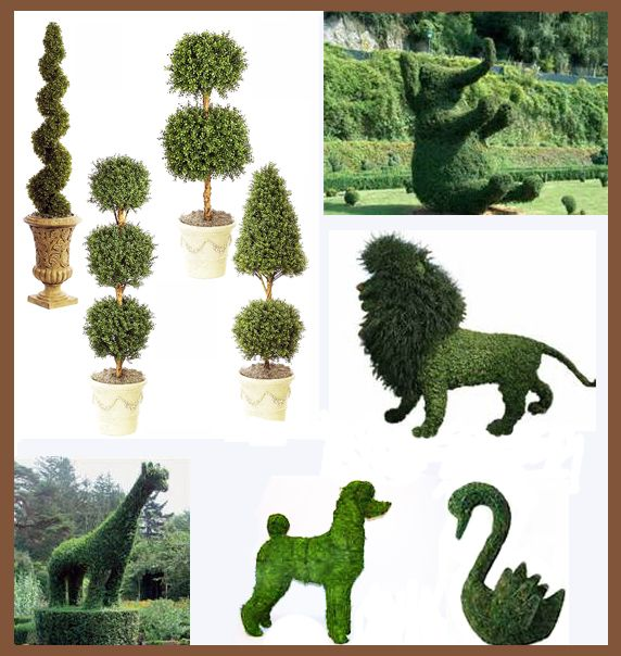 Upper left: traditional topiary forms. All the rest are examples of ...
