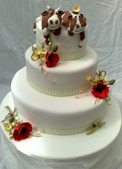 Novelty Cake Designs Are Mostly Fun And Whimsical Quirky Even A Little Crazy Especially Toppers Check Out These Wedding Cakes