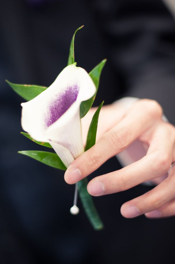 white rose purple calilily boutonniere