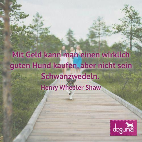 Mit Geld Kann Man Einen Wirklich Guten Hund Kaufen Aber Nicht Sein Schwanzwedeln Henry Wheelershaw Hund Hunde Dog Dogs D Hunde Hundebilder Hunde Bilder
