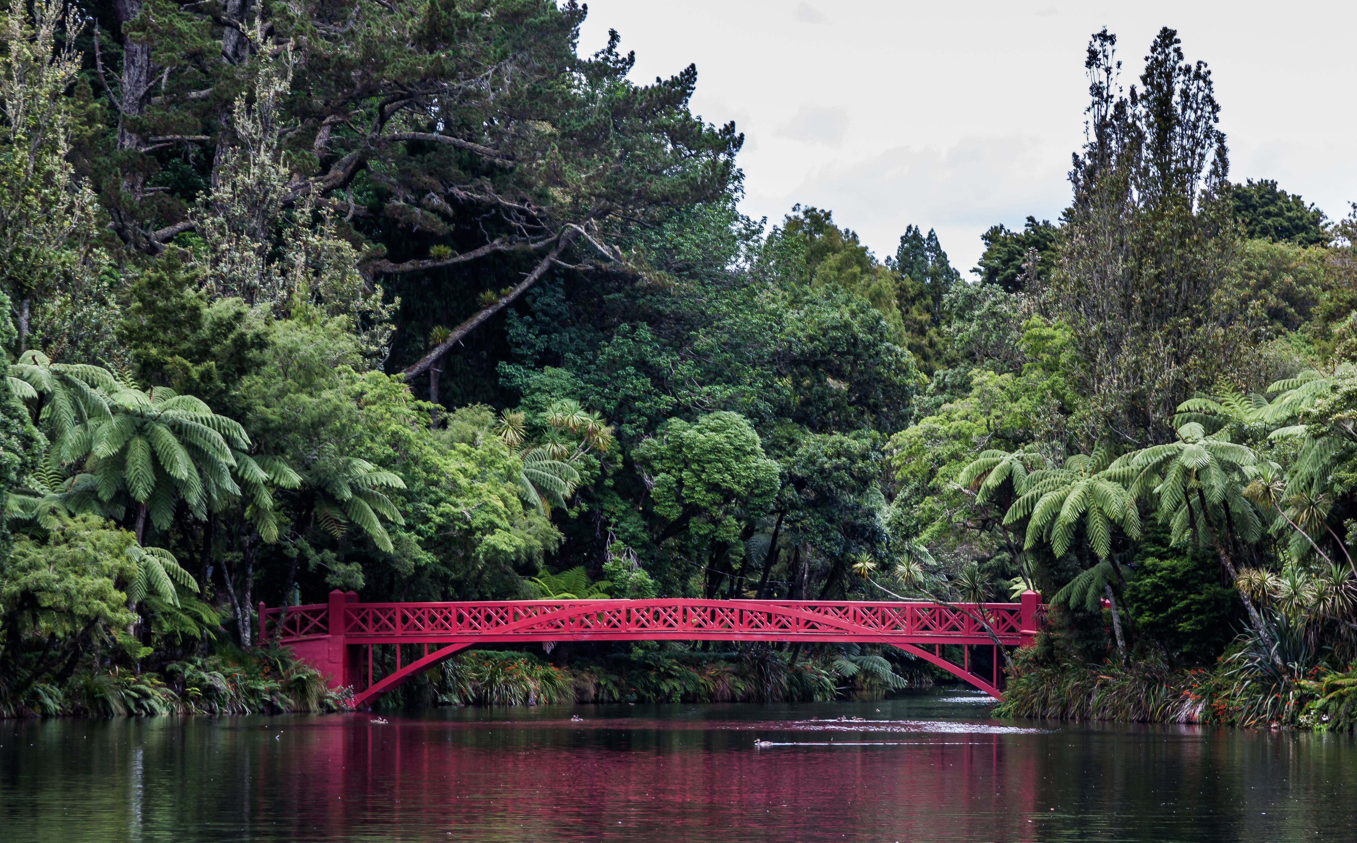 Poet S Bridge Pukekura Park New Plymouth Taranaki