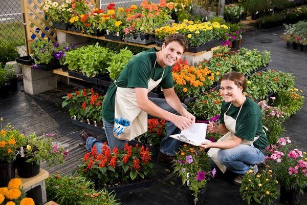 Whole Plants Plant Nursery
