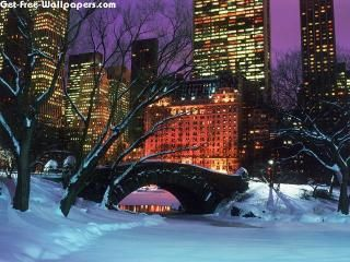 Free Central Park In Winter New York City Wallpapers Central Park In Winter New York City Pictures Centr New York Pictures New York Christmas New York Winter